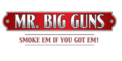 MR. BIG GUNS